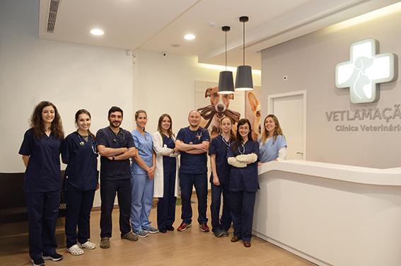 vetlamacaes-clinica-veterinaria