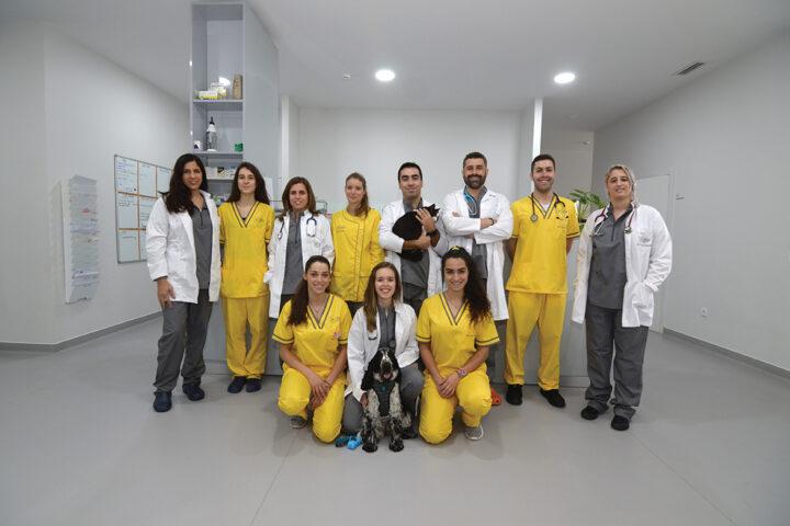 hospital-veterinario-bom-jesus