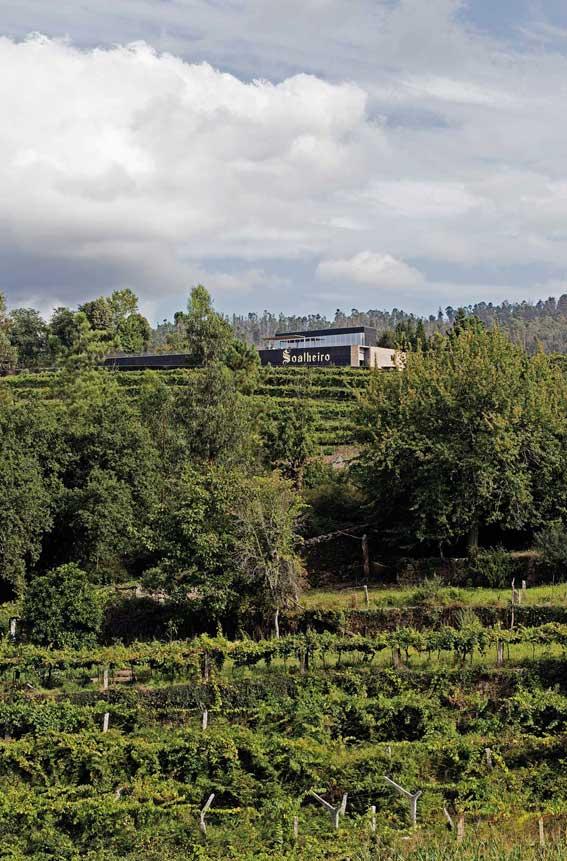 soalheiro-winery