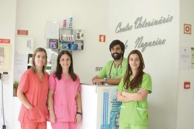 clinica-veterinaria-nogueira-2